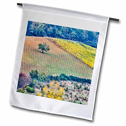 3dRose Danita Delimont - Agriculture - Italy, Tuscany, Lone Tree in a field. - 18 x 27 inch Garden Flag (fl_277588_2) (Tuscany Hanging Outdoor)