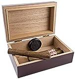 Scorch Torch Travel 10 Cigar Humidor Humidifier