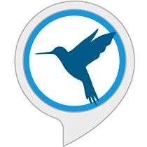 Ambient Noise: Bird Sounds
