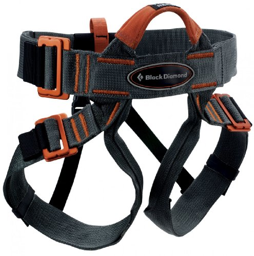 Best of the Best Climbing harness