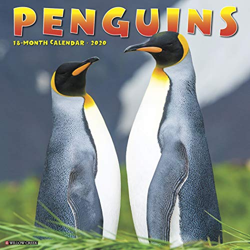 - Penguins 2020 Wall Calendar