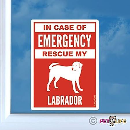 Service Dog on Board In Case of Emergency ICE Sticker 6in Vinyl Decal Labrador Retriever