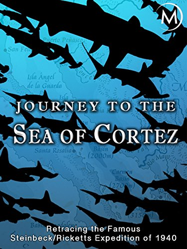 Baja Tie - Journey to the Sea of Cortez (English Subtitled)