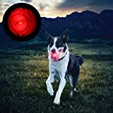 Dog toys,NNDA CO LED Ball For Dog, Lights Up for Night Play