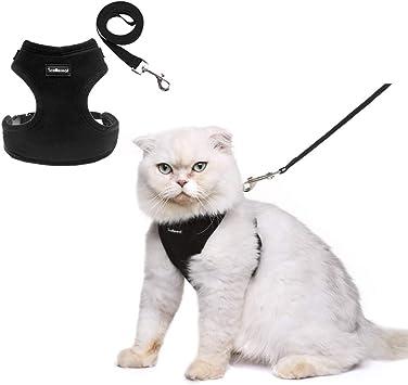 SCENEREAL Co. Kit de arnés, para gatos a prueba de grasa ...