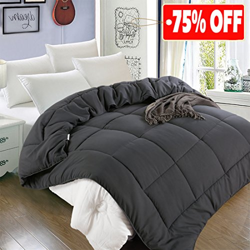 All Season Twin Goose Down Alternative Quilted Comforter