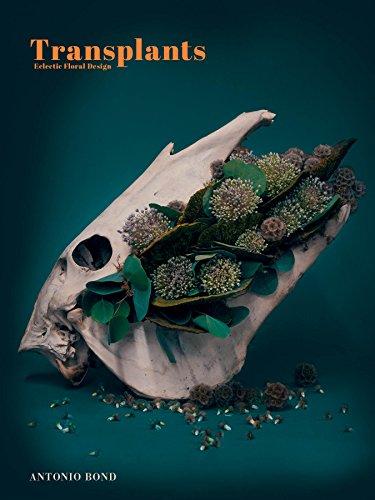 Transplants: Eclectic Floral Design
