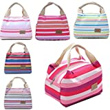 Bluefringe Lunch Bag Cooler Bag Women Tote Bag Insulated Lunch Box Water-resistant Thermal Lunch Bag Soft Leak Proof Liner Lunch Bags for women/Picnic/Boating/Beach/Fishing/Work