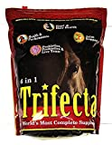 Horse Guard Trifecta Equine Vitamin Mineral Joint Hoof & Probiotic Supplement, 10 lb by HorseGuard