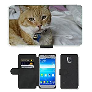 PU LEATHER case coque housse smartphone Flip bag Cover protection // M00113051 Grave pensativo Felino Gato Tristeza // Samsung Galaxy S5 S V SV i9600 (Not Fits S5 ACTIVE)