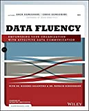 img - for Data Fluency: Empowering Your Organization with Effective Data Communication book / textbook / text book
