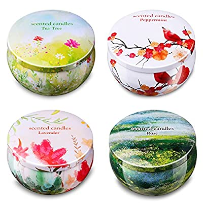 Ahyiyou Scented Candles Gift Set - Lavender, Rose, Tea Tree and Peppermint, Portable Travel Tin Candles 100% Soy Wax for Stress Relief and Aromatherapy, Christmas Gift Candles - 4 Pack