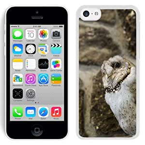 New Custom Designed Cover Case For iPhone 5C With Owl Animal Mobile Wallpaper (2) Phone Case