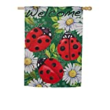 Evergreen Ladybugs on Green Suede House Flag, 29 x 43 inches