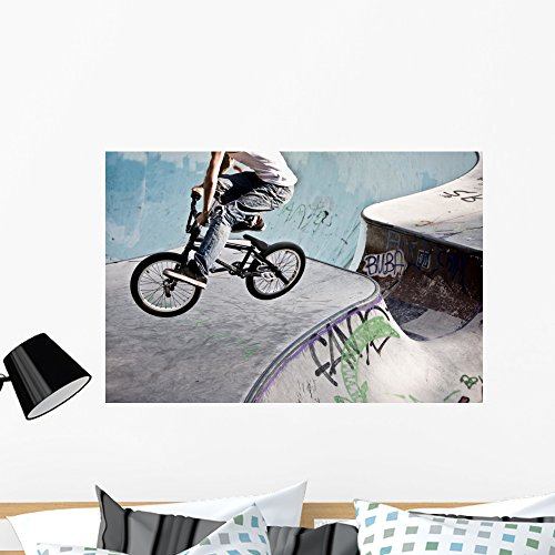 Wallmonkeys Bmx Skatepark Wall Mural Peel and Stick Graphic (36 in W x 24 in H) WM40023 (Pedals Juvenile)