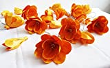 Thai Vintage Orange Roses Sesbania Artificial Flower 20 String Lights Outdoor Patio Party Christmas Lighting Ideas.