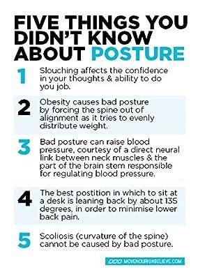 T-Box Posture Corrector for Women & Men - Medical Upper Back, Clavicle, Shoulder Support Brace - Figure 8 Design Improves Bad Posture, Hunchback, Thoracic Kyphosis, Forward Head, Back Pain Relief