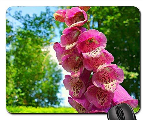 (Mouse Pad - Foxglove Flower Purpurea Digitalis Purpurea Petal)