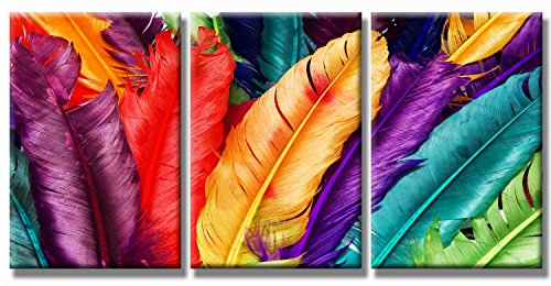 SEVEN WALL ARTS - Modern 3 Panels Stretched and Framed Contemporary Canvas Prints Artwork Rainbow Color Still Life Colorful Feathers Framed Paintings for Home Décor 20 x 28 Inch x 3Pcs