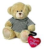 Prisoner of Love Valentine's Day Teddy Bear