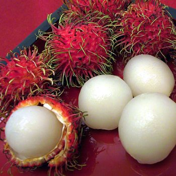 utans (2 lb) (Exotic Fruit)