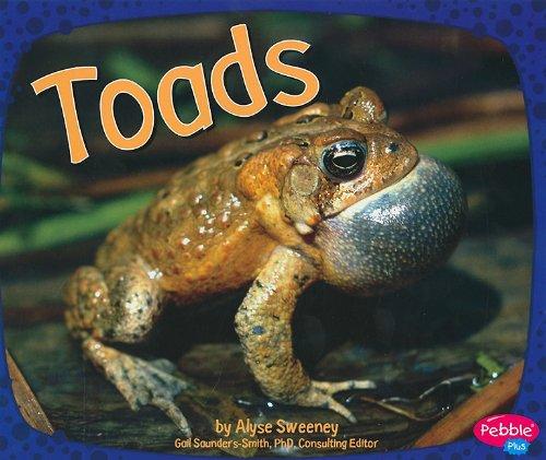 Toads (Amphibians)