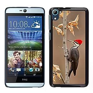 [Neutron-Star] Snap-on Series Teléfono Carcasa Funda Case Caso para HTC Desire D826 [Woodpecker Red Beak Autumn Winter]
