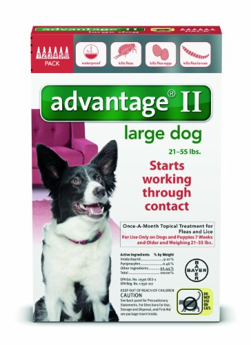 12 MONTH Advantage II Flea Control RED (for Dogs 2155 lbs)