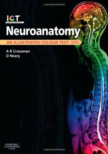 Neuroanatomy An Illustrated Colour Text 4e Amazoncouk Alan R Crossman PhD DSc David Neary MD FRCP 9780702030864 Books