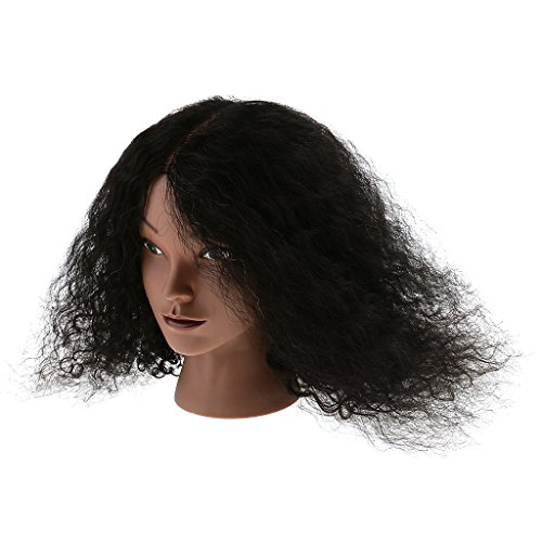 Price comparison product image Dovewill African American Afro REAL HUMAN HAIR Cosmetology Hairdressing Silicone Training Manikin Mannequin Head Doll