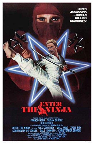Amazon.com: Enter the Ninja (B) POSTER (27