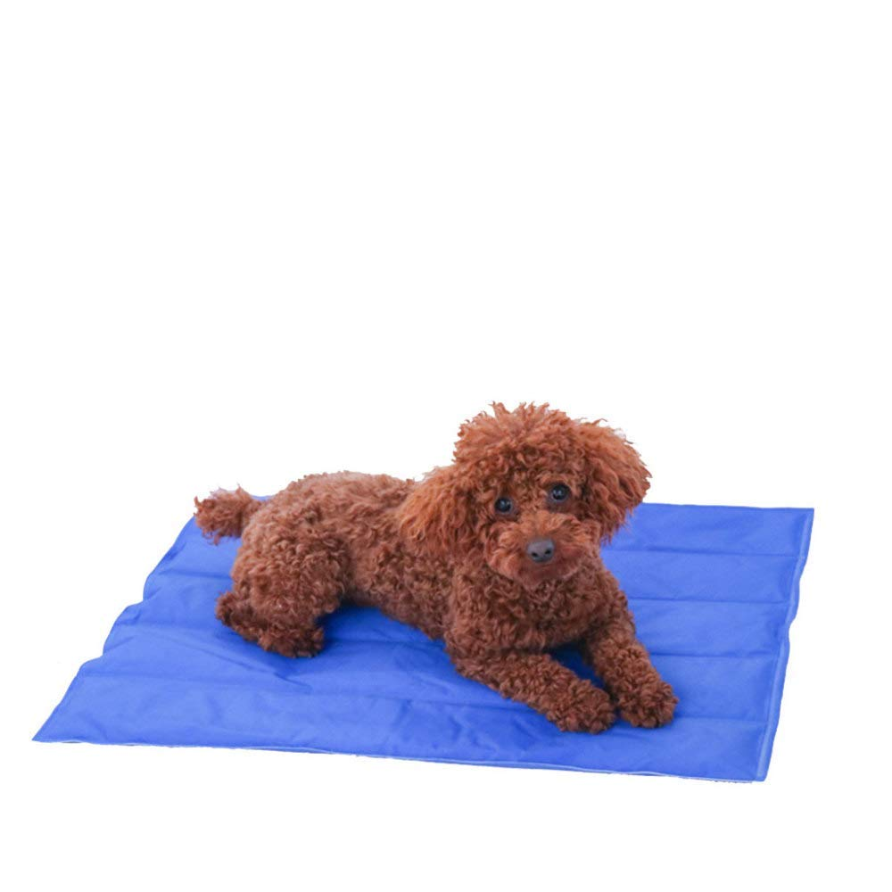 L Pet Dog Cat Cool Mat Self Cooling Gel Mat Pad Bed Mattress Heat Relief Non-Toxic Smart Choice Pet Cooling No More Over Heating Self Gel Pad Mattress Summer Soft Pad for Pets Sleeping (color   L)