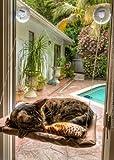 Sanny seat lettino con ventosa per finestre amaca per gatti