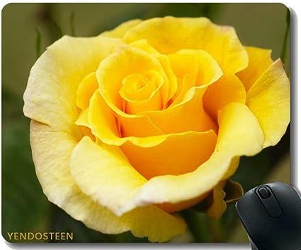 Amazon Yendosteenマウスパッド滑り止め ローズ黄バラ黄色い花マウスパッドマット Yendosteen マウスパッド 通販