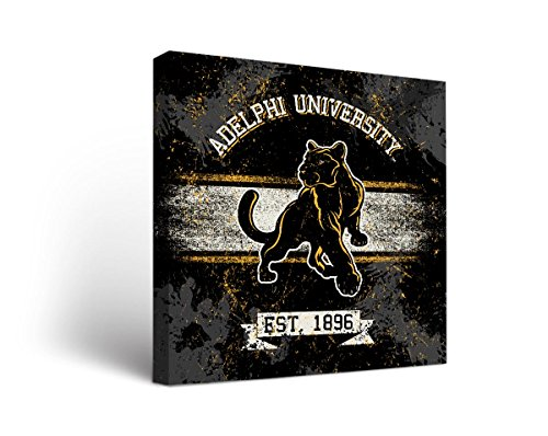 Adelphi Panthers Canvas Wall Art Banner Design (24x24)