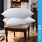 BESTChoiceForYou Square Pillow 10/90 Goose Feather Blend Pillow - 230 Thread Count Cambric Cotton Medium Density Twin Pack - Jumbo Size