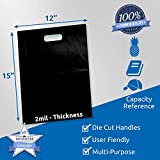 """100 Pack 12"""" x 15"""" with 2 mil Thick Black"""