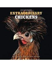 Extraordinary Chickens 2022 Wall Calendar