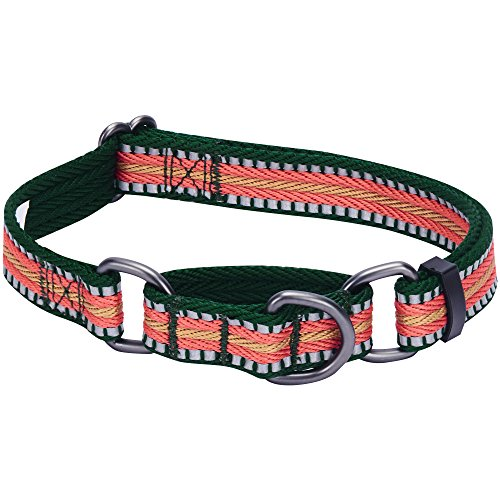 (Blueberry Pet 8 Colors 3M Reflective Multi-Colored Stripe Safety Training Martingale Dog Collar, Dark Green and Pink, Medium, Heavy Duty Adjustable Collars for Dogs)