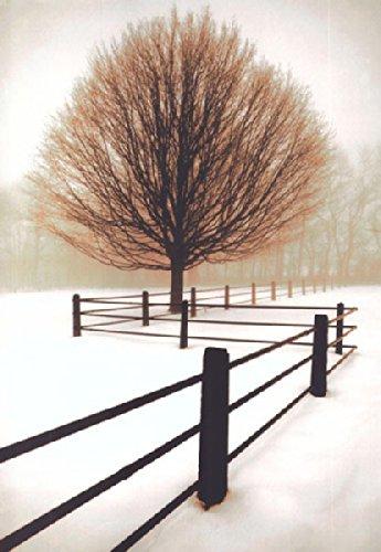 Solitude David Lorenz Winston Photograph Farm Tree Fence Nature Poster (Choose Size of Print) - Winston Contemporary Print