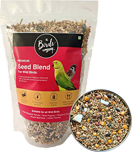 The Birds Company Premium Seed Blend of 9 Grains & Nuts, Fortified with Spirulina & Cuttlefish Bone, Bird Feeder Food…