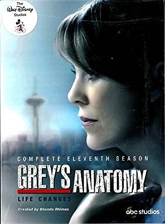 Amazon Greys Anatomy Season 11 Dvd Region 3 Complete