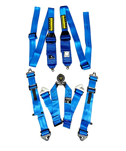 Schroth Racing 6 Point Camlock Racing Harness - Profi 2 for HANS Devices - Snap-In Flexi Lap Harness - (Harness Racing Equipment)