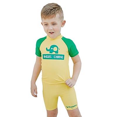 Wellwits Boy's Elephant Quick Dry UPF50+ Rashguard Boy Short Swimsuit