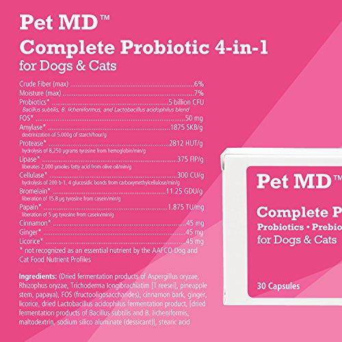 Dog Probiotic Prebiotic Digestive Probiotics