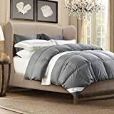 WarmKiss White Goose Down Comforter (Grey/White) Hypoallergenic Duvet Insert with Corner Ties 100% Soft Cotton Cover Down Proof Shell for All Season (Queen)