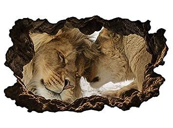 3d Wandtattoo Lowe Lowin Paar Liebe Tiere Afrika Wandbild