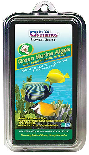Ocean Nutrition Green Algae Seaweed 10 Sheets 1