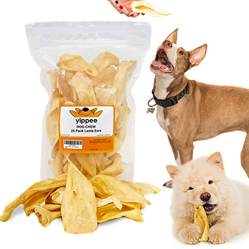Lamb Ears for Dogs - Dog and Puppy Chews | 25 Pack | Made in USA | All Natural Superior Quality Treats | Boiled and Baked with Zero Flavoring | Long Lasting Chew Product for Large and Small Dogs