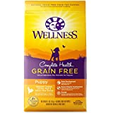 Wellness Complete Health Natural Grain Free Dry Puppy Food, Chicken & Salmon, 4-Pound Bag